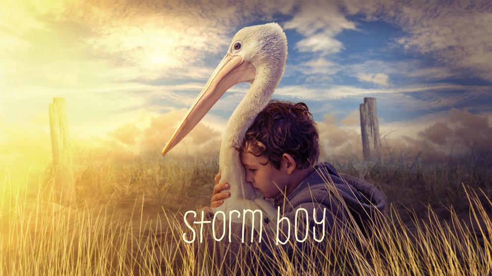 storm boy cartel promocional