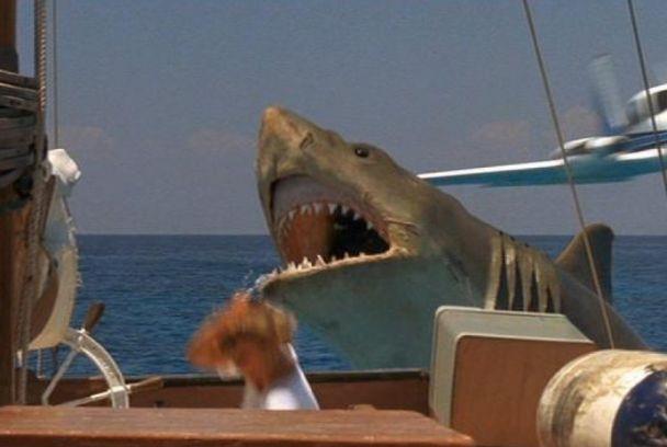 fotograma de tiburón, la venganza